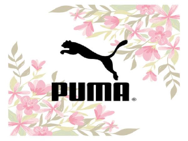 Весенние кроссовки Puma