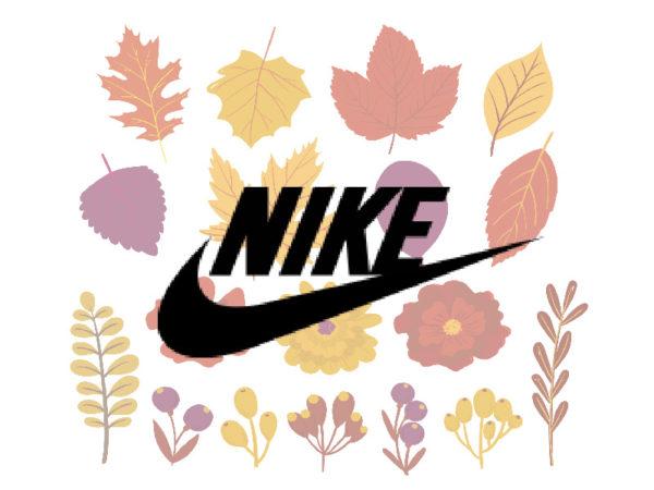 Осенние кроссовки Nike