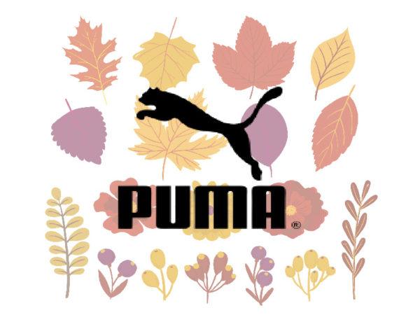 Осенние кроссовки Puma