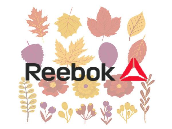 Осенние кроссовки Reebok
