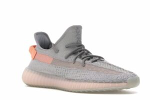 Adidas Yeezy Boost 350 V2 Static True Form (45-47)